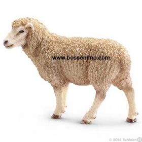 1/16 Sheep standing